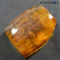 Certified GGL Baltic Amber Insect 46.05 Cts Natural Butterscotch Rough Rare